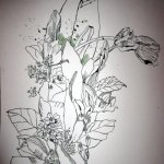 Blumenstrauß - Ausschnitt Zeichnung von Susanne Haun - 50 x 40 cm - Tusche auf Bütten