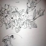 Blumen und Spatz - Ausschnitt aus Zeichenrolle Susanne Haun