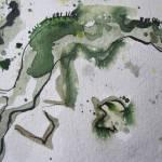 Ausschnitt 1 aus Baumrinde, Zeichnung von Susanne Haun