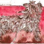 Benny, Hund von Gaby - Zeichnung von Susanne Haun 15 x 20 cm - Tusche auf Bütten