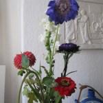 Hier beginnt die blaue Blüte zu welken - Foto von Susanne Haun
