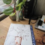 Mein Stillleben und Entstehung erste Zeichnung - Foto von Susanne Haun
