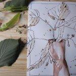 Entstehung erste Zeichnung - Foto von Susanne Haun