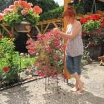 Meiner Mutter macht es Spaß, mich beim stöbern ihres Gartens zu beobachten - Foto von Erika Zeidler