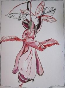 Fuchsie - Zeichnung von Susanne Haun - 40 x 30 cm - Tusche und Aquarell auf Bütten