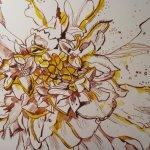 Entstehung Tangetes Zeichnung von Susanne Haun