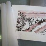Für diese Zeichnung habe ich mich entschieden, das Pauspapier liegt schon bereit - Foto von Susanne Haun