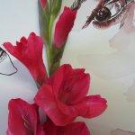 Orphelia schaut zur Gladiole - Zeichnung von Susanne Haun