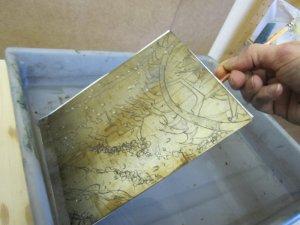 Die Platte liegt in der Salpetersäure und diese äzt dort, wo die Linien sind, das Zink - Foto von Susanne Haun