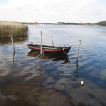 Kleines Boot im Hafen - Foto von Susanne Haun