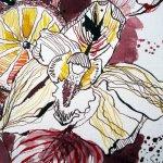 Orchidee - Ausschnitt Zeichnung von Susanne Haun