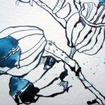 Offene Blüten - Ausschnitt Zeichnung von Susanne Haun