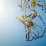 Es ist, als ob ich die Tulpe wachsen lasse - Susanne Haun