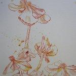 Blüten - Zeichnung von Susanne Haun - 34 x 22 cm - Tusche auf Bütten