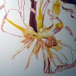Dunkelheiten geben der Zeichnung Tiefe - Susanne Haun