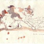 Katze - Zeichnung von Susanne Haun - Tusche auf Silberburg Bütten - 15 x 20 cm, 2007