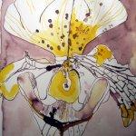 Entstehung Frauenschuh - Zeichnung von Susanne Haun
