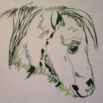 Erster Pferdekopf - Entstehung Zeichnung von Susanne Haun
