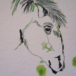 Zweiter Pferdekopf - Entstehung Zeichnung von Susanne Haun