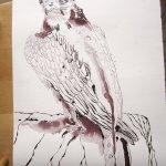 Entstehung Falke - Zeichnung von Susanne Haun