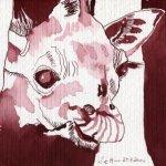 Giraffenbaby Vers 3 - Zeichnung von Susanne Haun - 17 x 22 cm - Tusche auf Hahnemühle Aquarellkarton Britannia