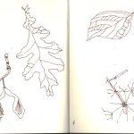 Herbstskizzen 2 von Susanne Haun