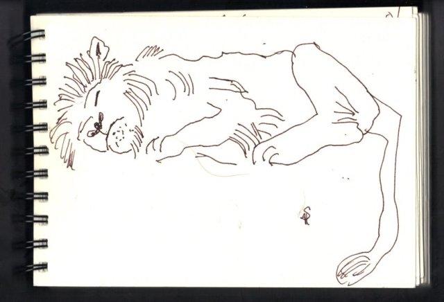 Schlafender Löwe - Skizze von Susanne Haun