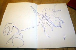 Annette Pehnts Blumen -Skizze von Susanne Haun