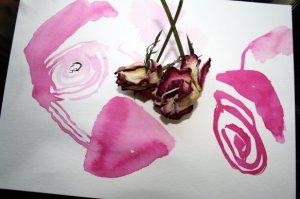 Entstehung Zeichnung verblühte Rose - Zeichnung von Susanne Haun