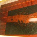 Das Eisendreichloris ist schon sehr verschlammt - Foto von Susanne Haun