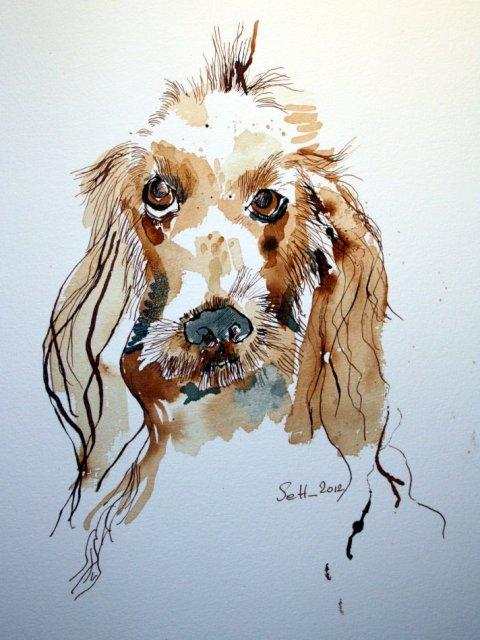 Basset Coco - Zeichnnung von Susanne Haun - Tusche auf Bütten - 40 x 30 cm