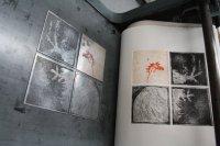 Auflagen drucken - Huhn in Mexiko (c) Foto von Radierungen von Susanne Haun (2)