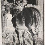 Druck von einer Dürerplatte in Schwarz (c) Foto von Radierungen von Susanne Haun