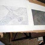 Zinkplatte und gedruckte Radierung (c) Susanne Haun