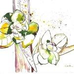 Erstes Grün - Tusche auf Bütten - 17 x 22 cm - Version 1 (c) Zeichnung von Susanne Haun