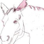 Pferd Version 3 Tusche auf Bütten 22 x 22 cm (c) Zeichnung von Susanne Haun