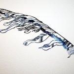 Der von der Sonne zerstörte Flügel des Ikaros (c) Zeichnung von Susanne Haun
