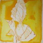 Iris Version 2 15 x 15 cm Tusche auf Bütten (c) Zeichnung von Susanne Haun