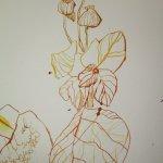 Liebliche Blätter (c) Zeichnung von Susanne Haun