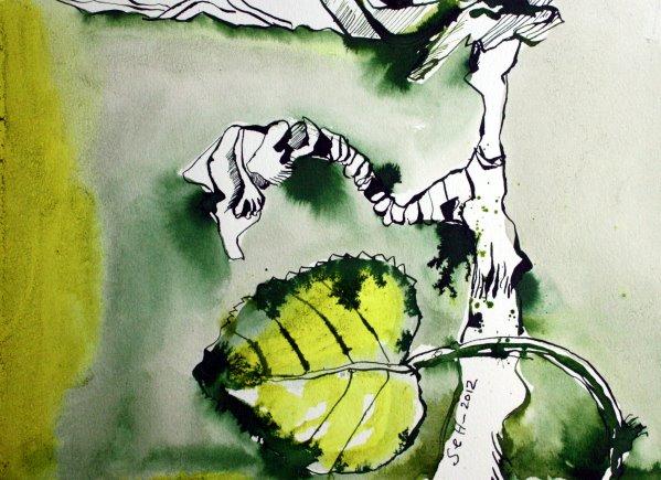 Efeu 22 x 34 cm Tusche auf Bütten (c) Zeichnung von Susanne Haun