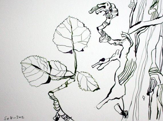 Efeu Version II 22 x 34 cm Tusche auf Bütten (c) Zeichnung von Susanne Haun
