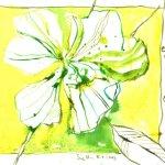 Eine Farbe Gelb 17 x 22 cm Tusche auf Bütten Version 1 (c) Zeichnung von Susanne Haun