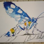 Insekt Version 2 30 x 40 cm Tusche auf Bütten (c) Zeichnung von Susanne Haun