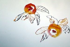 Zum Paradies gehören immer Äpfel (c) Zeichnugn von Susanne Haun