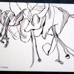 Blüte 17 x 22 cm Tusche auf Bütten (c) Zeichnung von Susanne Haun