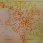 Dahlie Nr. 1 Strichätzung 15 x 20 cm (c) Radierung von Susanne Haun