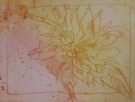 Dahlie Nr. 2 Strichätzung 15 x 20 cm (c) Radierung von Susanne Haun