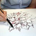 Susanne Haun zeichnet mit der Feder (c) Cordula S.
