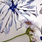Es entsteht noch ein Blütenblatt (c) Foto von Susanne Haun