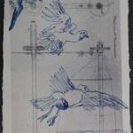 Blatt 50 (c) Susanne Haun Der Traum vom Fliegen